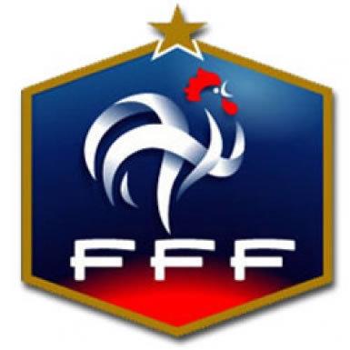 France Football Crest Pin Badge