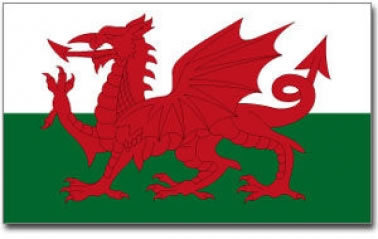 Giant Wales National Flag