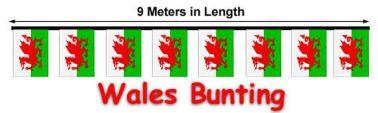 Wales Flag 9 Meter Bunting