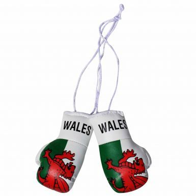 Wales Flag Mini Boxing Gloves