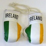 Ireland Flag Mini Boxing Gloves
