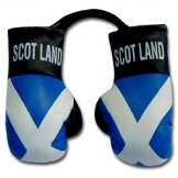 Scotland Flag Mini Boxing Gloves