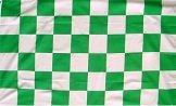 Green & White Flag