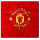 Man Utd Face Towel Manchester United