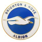 Brighton & Hove Albion Pin Badge